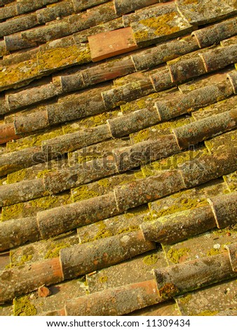 historical roof tiles covered with moss - stock photo