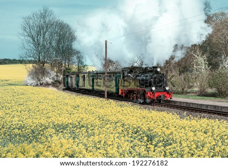 Historical steam train on island Ruegen going through rapeseed fields - stock photo