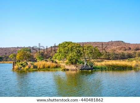 historical structure in Padma Lake in Ranthambhore National park, India