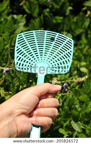 Holding a dead fly on a flyswatter - stock photo