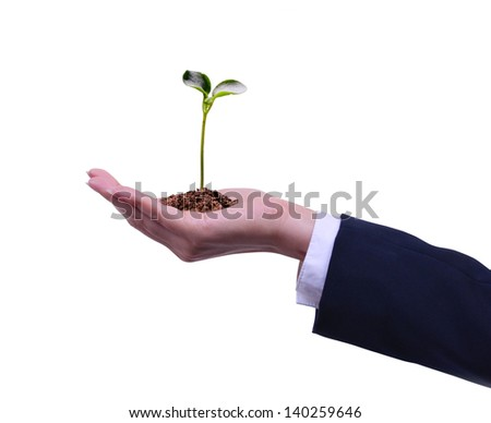 holding a plant in hand on a white background