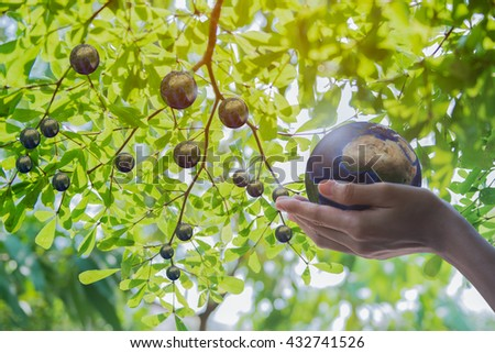 Holding earth planet in the hand. The imagination of creation earth planet concept and Corporate Social Responsibility or CSR concept. Elements of this image furnished by NASA. Clipping path included. - stock photo