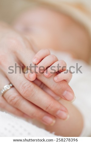 Holding Hands. hand the sleeping baby in the hand of mother close-up. Baby hand gently holding adult's finger. Closeup of a baby hand in hand mother