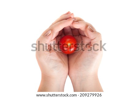 Holding hands with tomato isolated on white background - stock photo