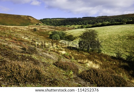 Hole of Horcum, North York Moors, Goathland, Yorkshire, UK. A view across the undulating moorland at early autumn but the heather is still in bloom.