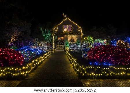 Holiday Christmas Lights at Night Outdoors, Park, House