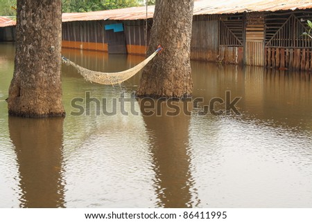 Holiday.Cribs and trees that were flooded. - stock photo