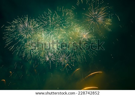 holiday firework in night sky - stock photo