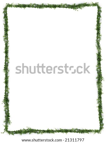 Holiday greens frame trim - stock photo