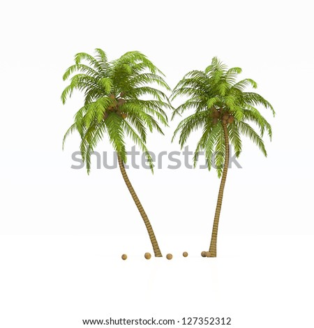 Holiday Island with palms, coconuts and surfboard on white - stock photo