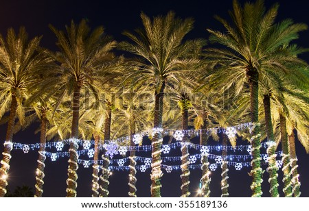 Holiday lights on palm trees in Tampa, Fl. - stock photo