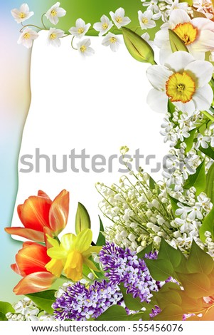 Holiday Spring card. Floral background. Bright colorful flowers.