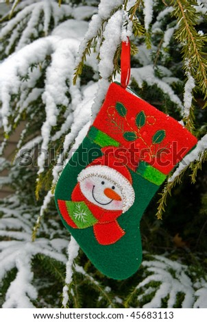holiday stocking hanging from pine bough - stock photo