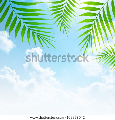 Holidays background, blue sky and palm tree green fresh branches collage, abstract natural floral border, summer travel and vacation, paradise beach getaway, zen relaxation concept - stock photo