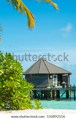 Holidays in the Maldives (bungalows on the water)