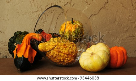 hollovin's gourds & pumkins - stock photo