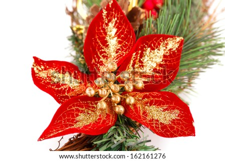 Holly berry flower and Christmas decoration isolated on white background. - stock photo