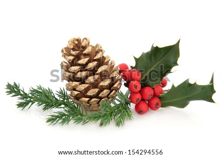 Holly berry leaf sprig with gold pine cone and fir over white background. - stock photo