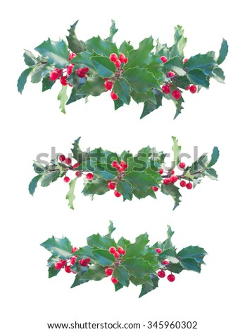 Holly branch with  green leaves and red berries set of  borders isolated on white background - stock photo