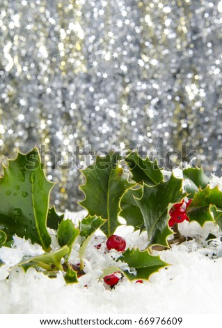 Holly with red berries in snow with sparkling background - stock photo