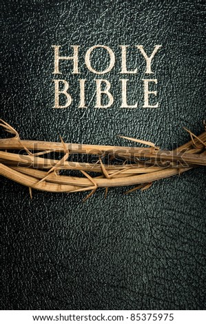 holy bible and crown of thorns - stock photo
