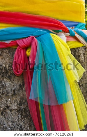 holy bodhi tree with many clothes draped around it