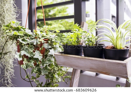 Balcony stock images royalty free images vectors for Balkoni in english