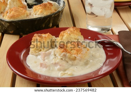 Home cooked chicken pot pie with a biscuit crust - stock photo