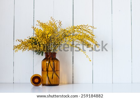 Home decor, mimosa yellow spring flowers in a vintage bottle on the white wall background - stock photo