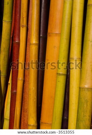 home decorating with colored bamboo poles in a natural texture