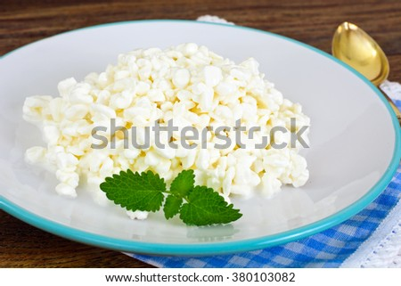 Home Dietary Fat Cottage Cheese Beaded Curd Studio Photo - stock photo