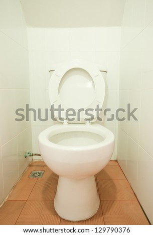 home flush toilet, clean and white