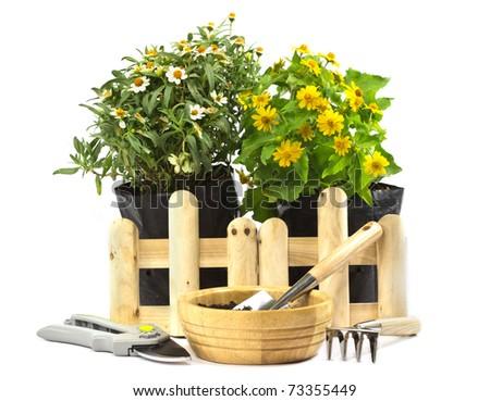 home gardening - stock photo