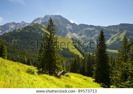 Home in Bavarian Alps, Germany - stock photo