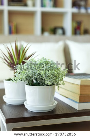 Home interior decoration with plant in vase sofa and bookshelf on background - stock photo