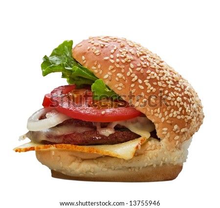 Home Made Classic Hamburger - stock photo