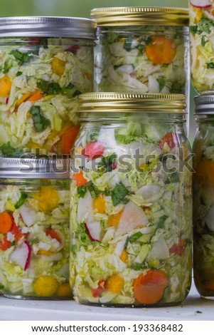 home made cultured or fermented vegetables in  glass jars - stock photo