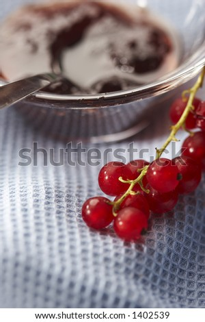 home-made jam and red currant - stock photo