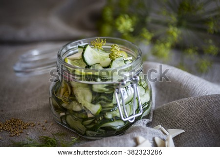 Home made, pickled cucumber in a jar of glass
