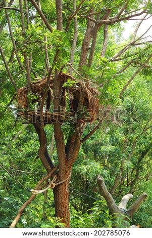 Home on a tree in the garden with nature. - stock photo