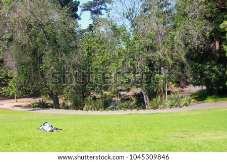 Homeless In California Stock Images Royalty Free Images