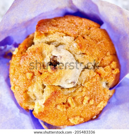 Homemade blueberry muffin wrapped in paper. Top point of view  - stock photo