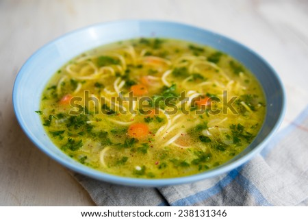 Homemade Chicken Noodle Soup with Carrots and Parsley - stock photo