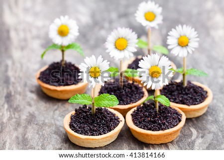 Homemade  chocolate caramel tartlets with poppy seeds and sugar. Creative garnish with real daisy and mint leaves.  - stock photo