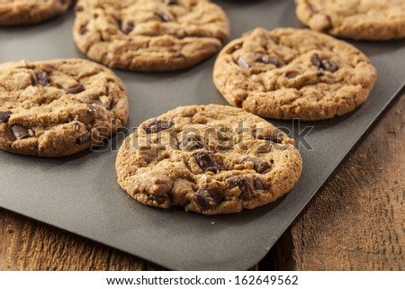 Homemade Chocolate Chip Cookies Ready to Eat - stock photo