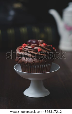 Homemade Chocolate Cupcake with chocolate frosting against a dark background - stock photo