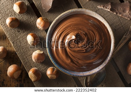 Homemade Chocolate Hazelnut Spread on a Background - stock photo