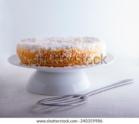 Homemade coconut cake - stock photo
