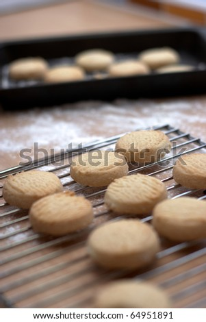 Homemade Cookies on a cooling rack - stock photo
