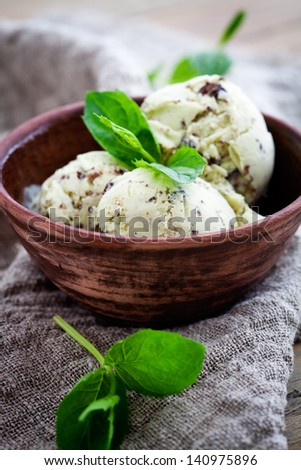 Homemade ice cream with mint and chocolate chips - stock photo